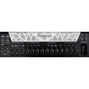 Acordeon Roland FR 8X