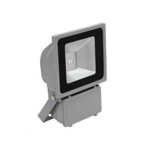 Proiector eurolite LED IP FL-80 COB RGB 120° RC