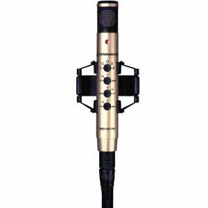 Microfon studio Sennheiser MKH 800 P 48