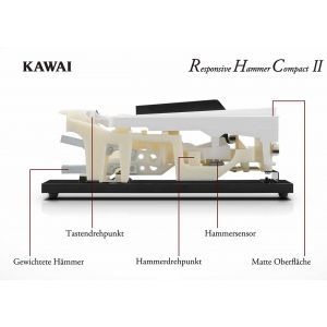 Pian Digital Kawai CN 17 B