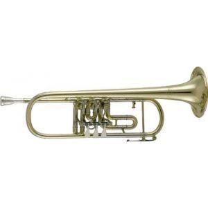 Trompeta V.F.Cerveny CTR 501px BB