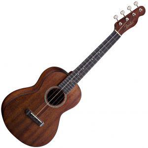 Ukulele si banjo